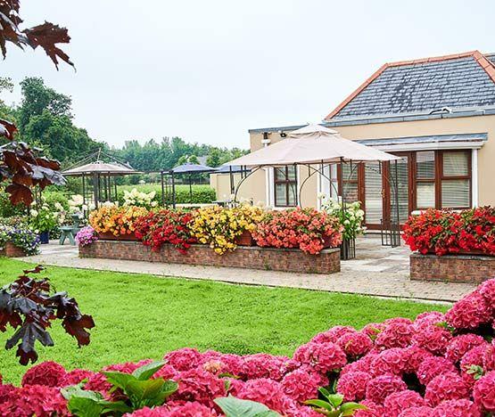 Manor-garden